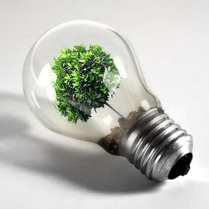 Consumo Consciente (ou consumo sustentável). Como aplicar?